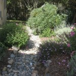 Decorative drainage swale, handles rain water